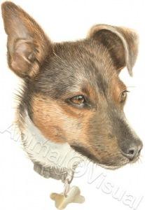 Dog-Rusty-1