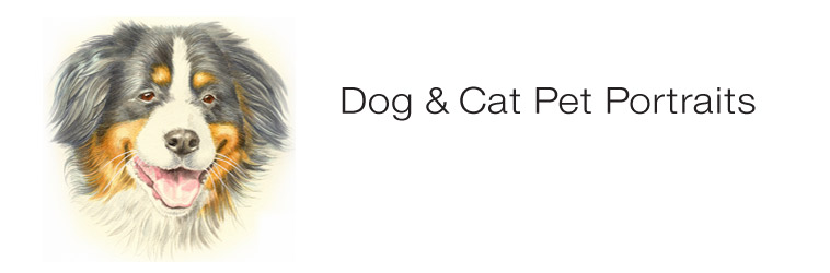 Dog & Cat Pet Portraits